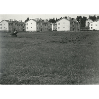 NKBFA-GPH78centrala lekplatsen.fågelboparken.jpg